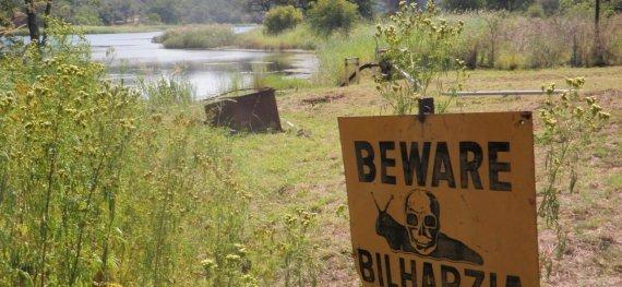 Bilharzia in Africa